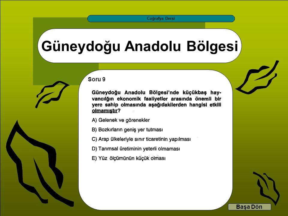 Güneydoğu Anadolu Bölgesi Coğrafya Dersi Başa Dön Soru 9
