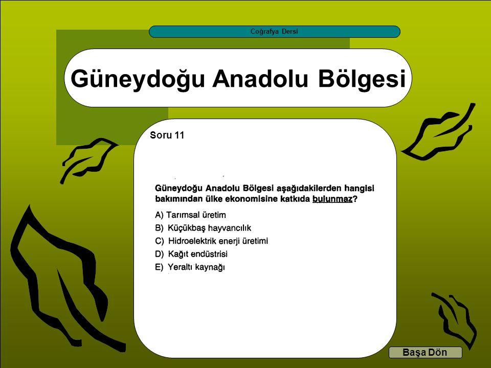 Güneydoğu Anadolu Bölgesi Coğrafya Dersi Başa Dön Soru 11