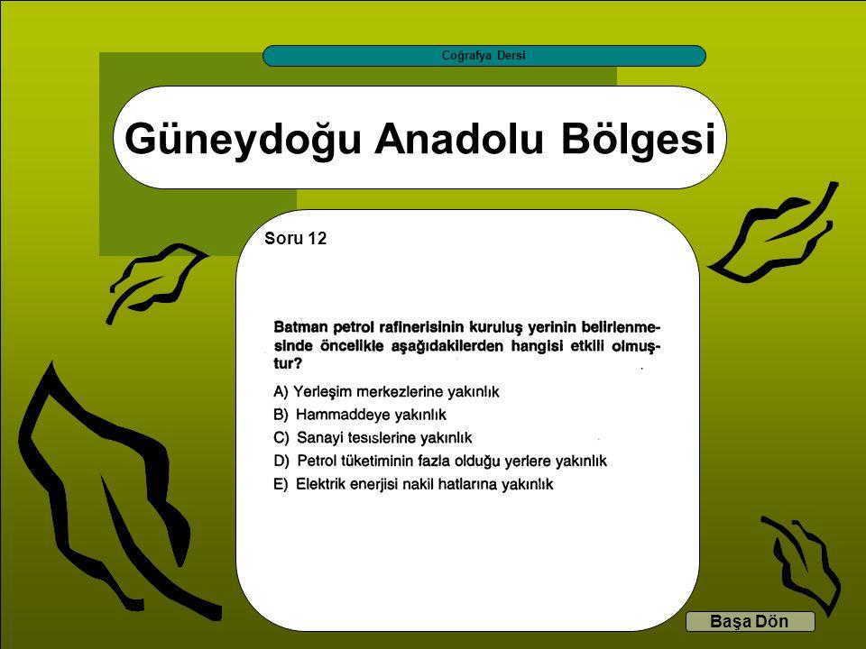 Güneydoğu Anadolu Bölgesi Coğrafya Dersi Başa Dön Soru 12