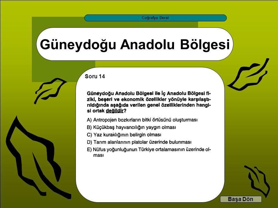 Güneydoğu Anadolu Bölgesi Coğrafya Dersi Başa Dön Soru 14