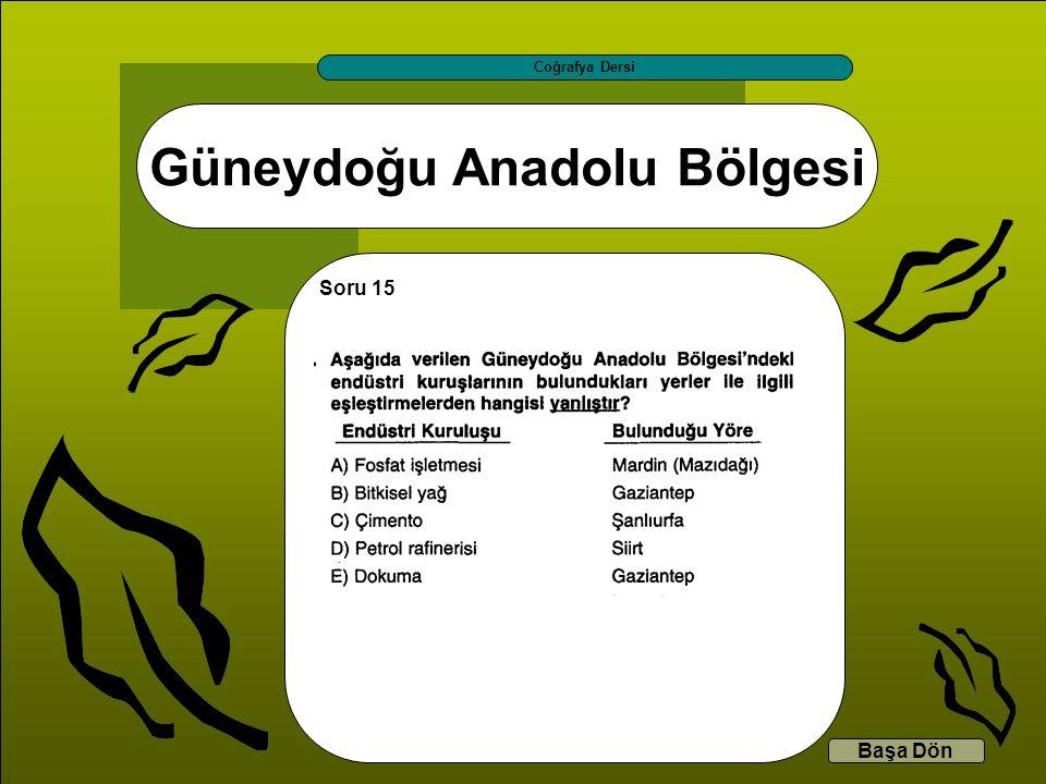 Güneydoğu Anadolu Bölgesi Coğrafya Dersi Başa Dön Soru 15