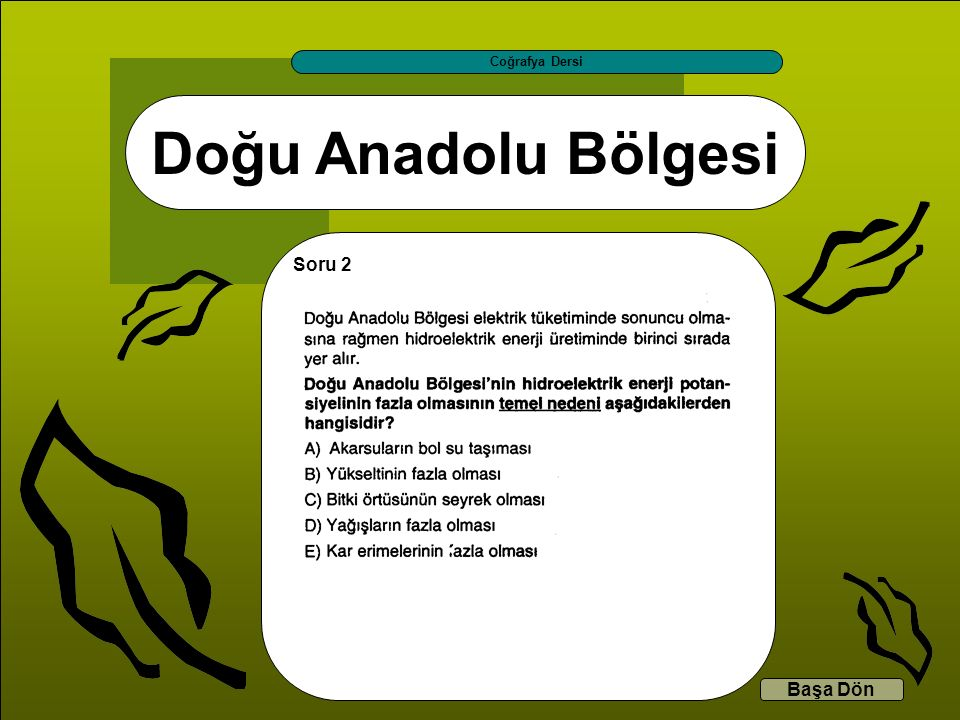 Doğu Anadolu Bölgesi Coğrafya Dersi Başa Dön Soru 2