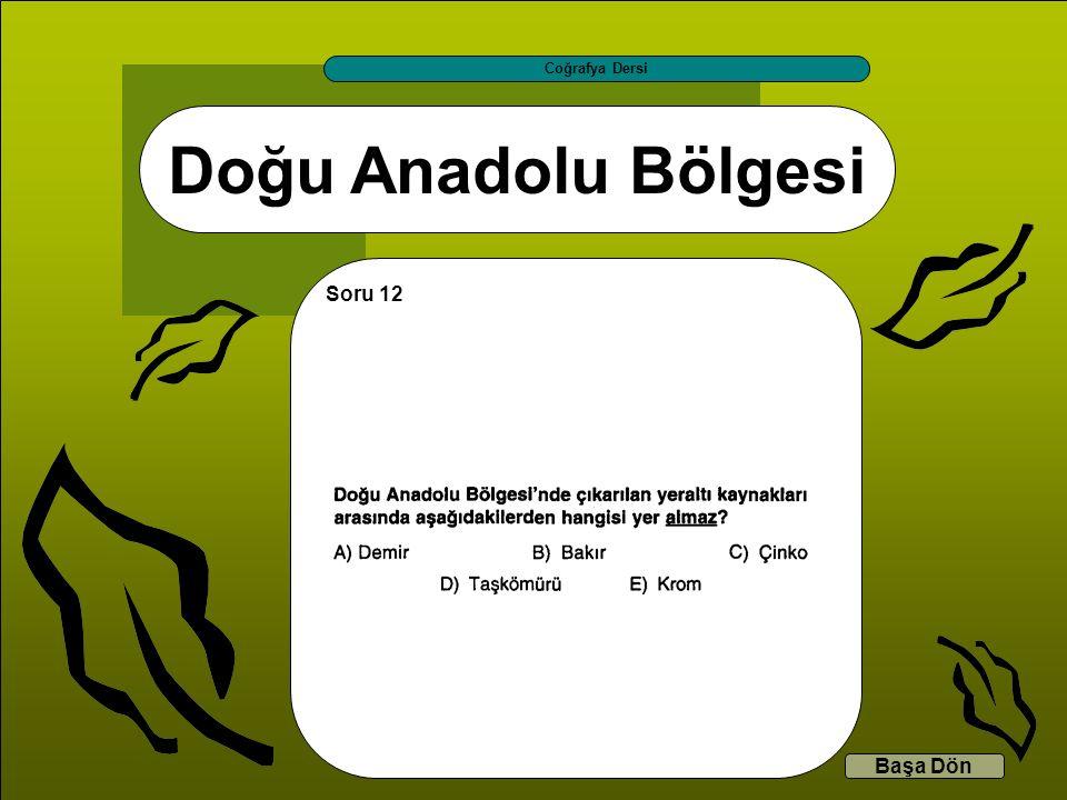 Doğu Anadolu Bölgesi Coğrafya Dersi Başa Dön Soru 12