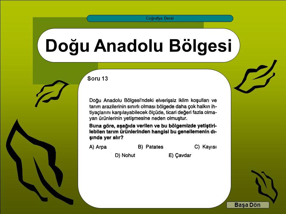 Doğu Anadolu Bölgesi Coğrafya Dersi Başa Dön Soru 13