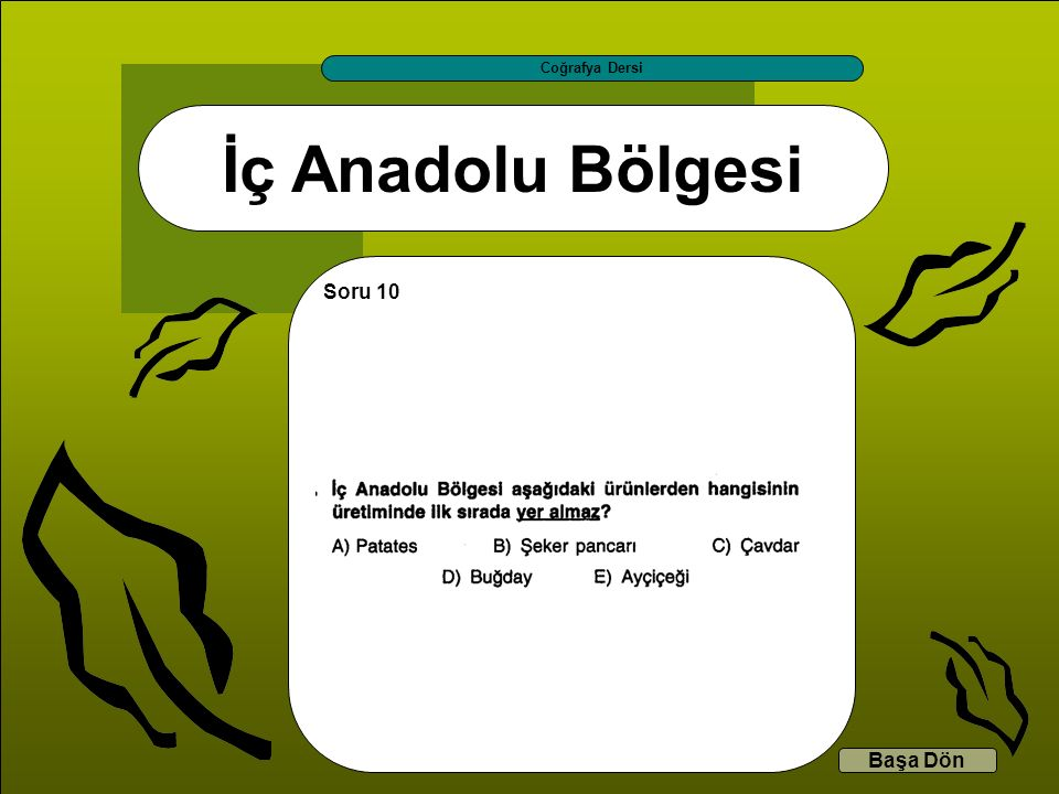 İç Anadolu Bölgesi Coğrafya Dersi Başa Dön Soru 10