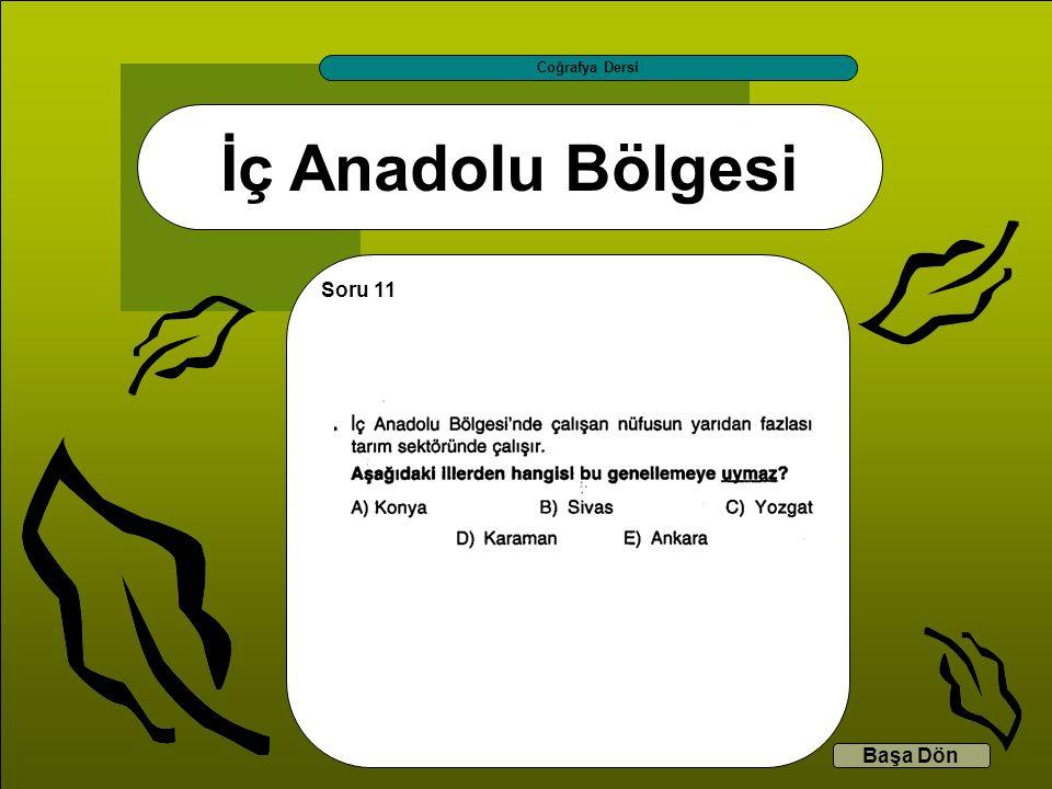 İç Anadolu Bölgesi Coğrafya Dersi Başa Dön Soru 11