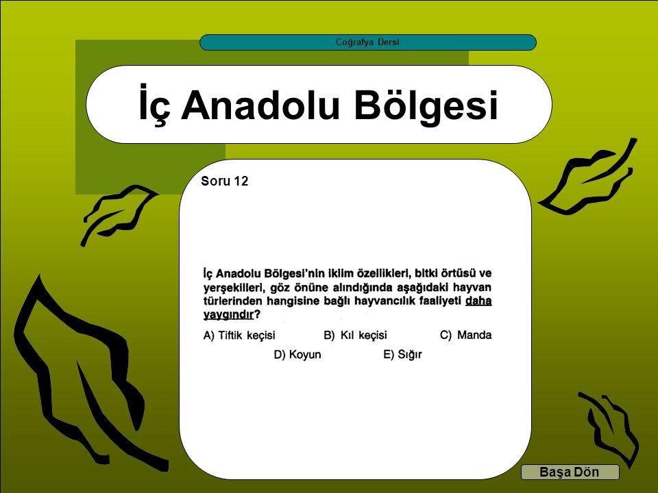 İç Anadolu Bölgesi Coğrafya Dersi Başa Dön Soru 12