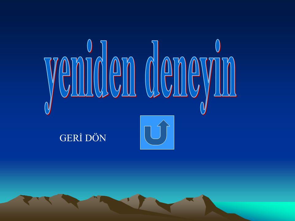 GERİ DÖN