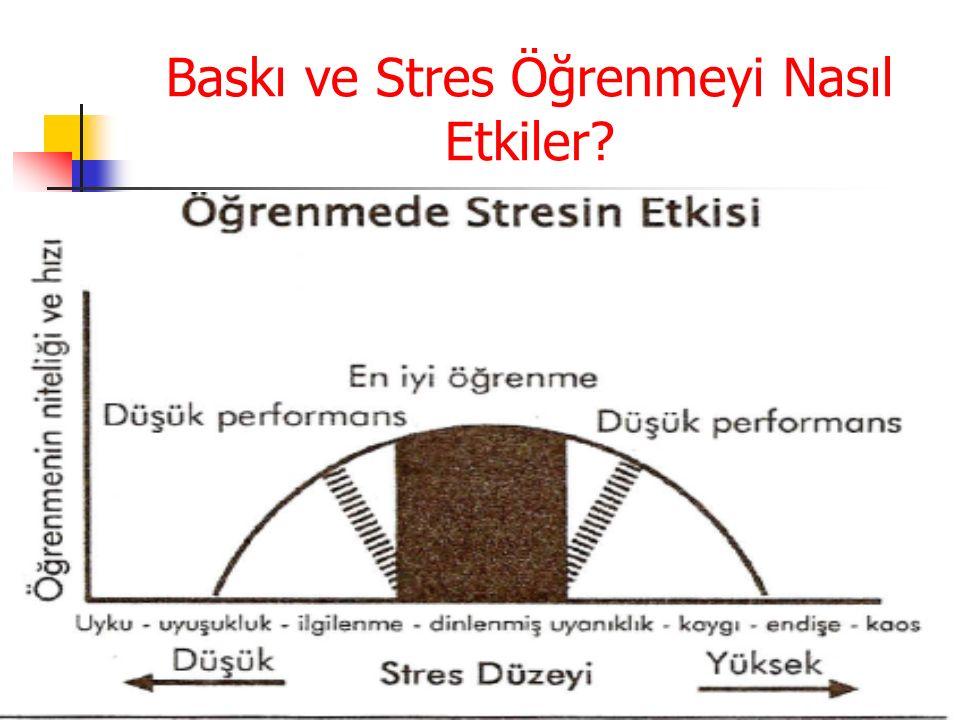 Baskı ve Stres Öğrenmeyi Nasıl Etkiler