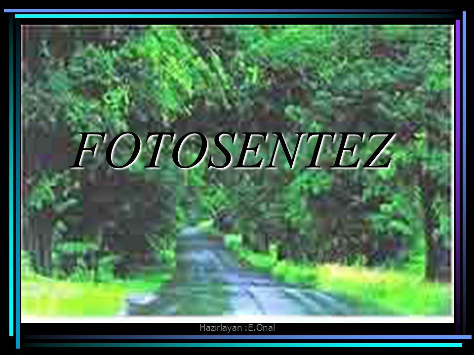 Hazırlayan :E.Önal FOTOSENTEZ
