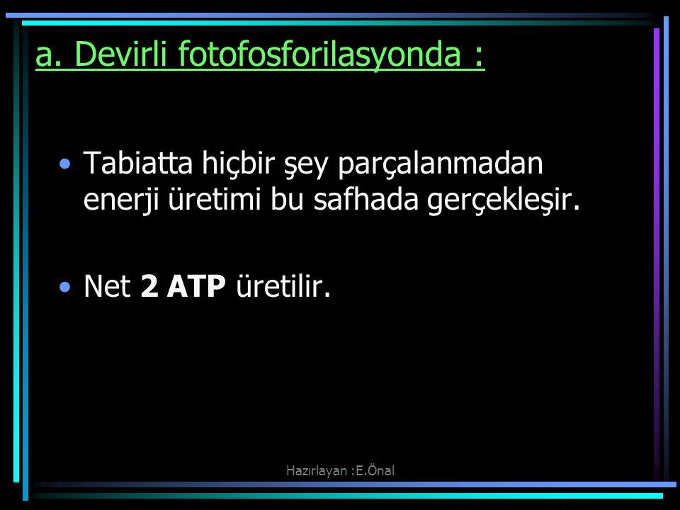 Hazırlayan :E.Önal a. Devirli fotofosforilasyonda : Tabiatta hiçbir şey parçalanmadan enerji üretimi bu safhada gerçekleşir. Net 2 ATP üretilir.
