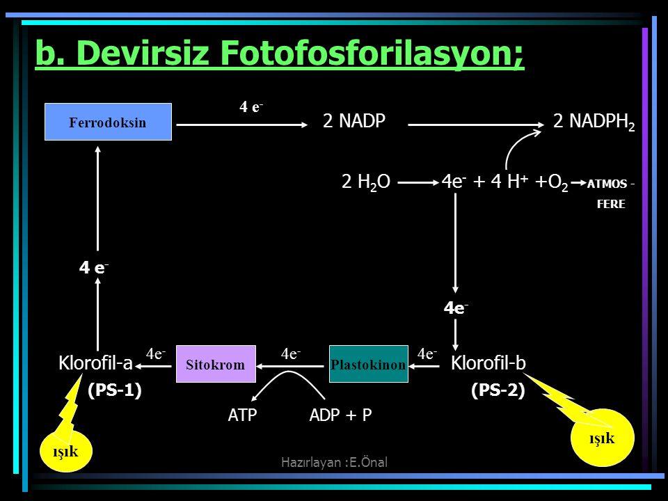 Hazırlayan :E.Önal b. Devirsiz Fotofosforilasyon; 2 NADP 2 NADPH 2 2 H 2 O 4e - + 4 H + +O 2 ATMOS - FERE 4 e - Klorofil-a Klorofil-b (PS-1) (PS-2) AT