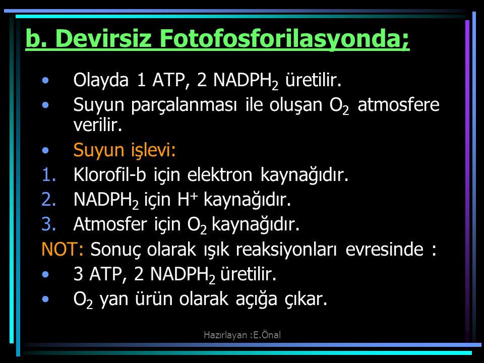 Hazırlayan :E.Önal b. Devirsiz Fotofosforilasyonda; Olayda 1 ATP, 2 NADPH 2 üretilir. Suyun parçalanması ile oluşan O 2 atmosfere verilir. Suyun işlev