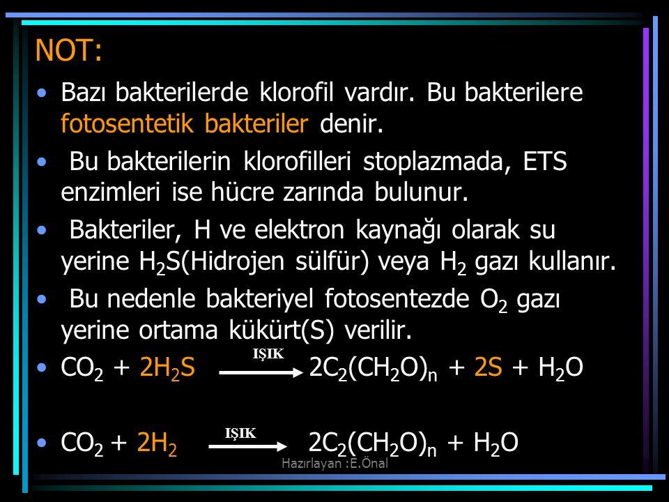 Hazırlayan :E.Önal NOT: Bazı bakterilerde klorofil vardır. Bu bakterilere fotosentetik bakteriler denir. Bu bakterilerin klorofilleri stoplazmada, ETS