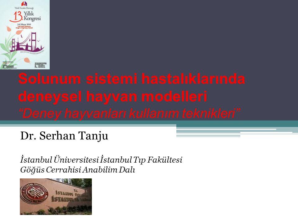 """Solunum sistemi hastalıklarında deneysel hayvan modelleri """"Deney hayvanları kullanım teknikleri"""" Dr. Serhan Tanju İstanbul Üniversitesi İstanbul Tıp F"""
