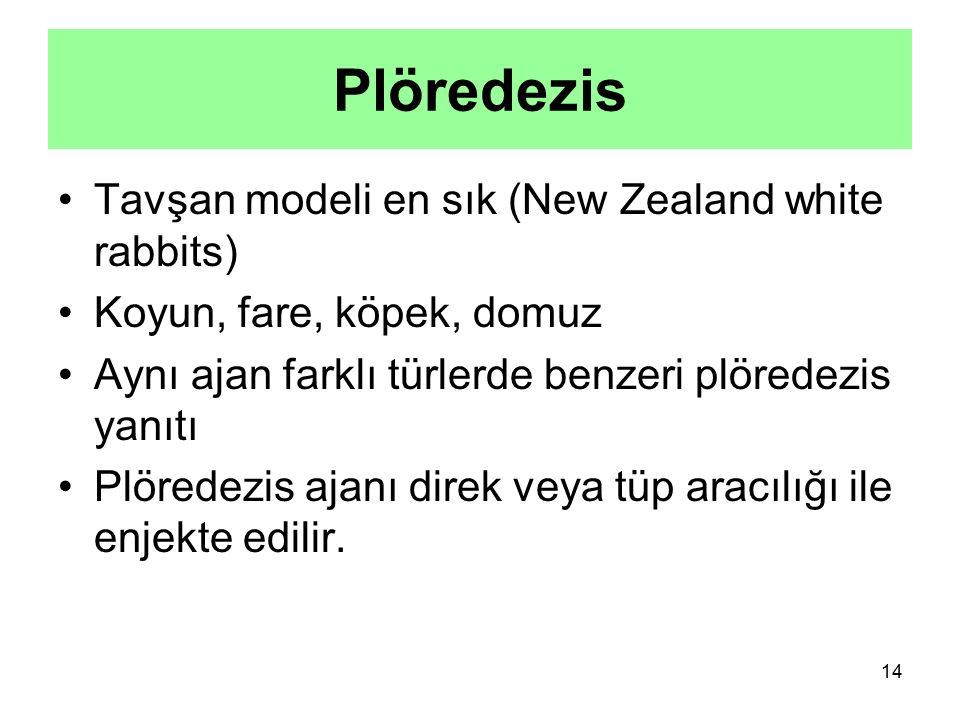 14 Tavşan modeli en sık (New Zealand white rabbits) Koyun, fare, köpek, domuz Aynı ajan farklı türlerde benzeri plöredezis yanıtı Plöredezis ajanı dir