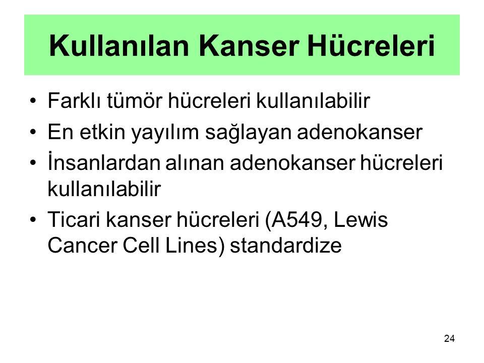 24 Kullanılan Kanser Hücreleri Farklı tümör hücreleri kullanılabilir En etkin yayılım sağlayan adenokanser İnsanlardan alınan adenokanser hücreleri ku