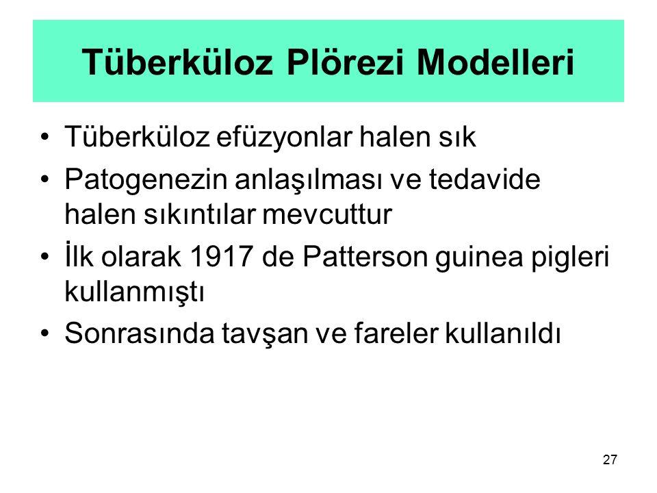 27 Tüberküloz Plörezi Modelleri Tüberküloz efüzyonlar halen sık Patogenezin anlaşılması ve tedavide halen sıkıntılar mevcuttur İlk olarak 1917 de Patt