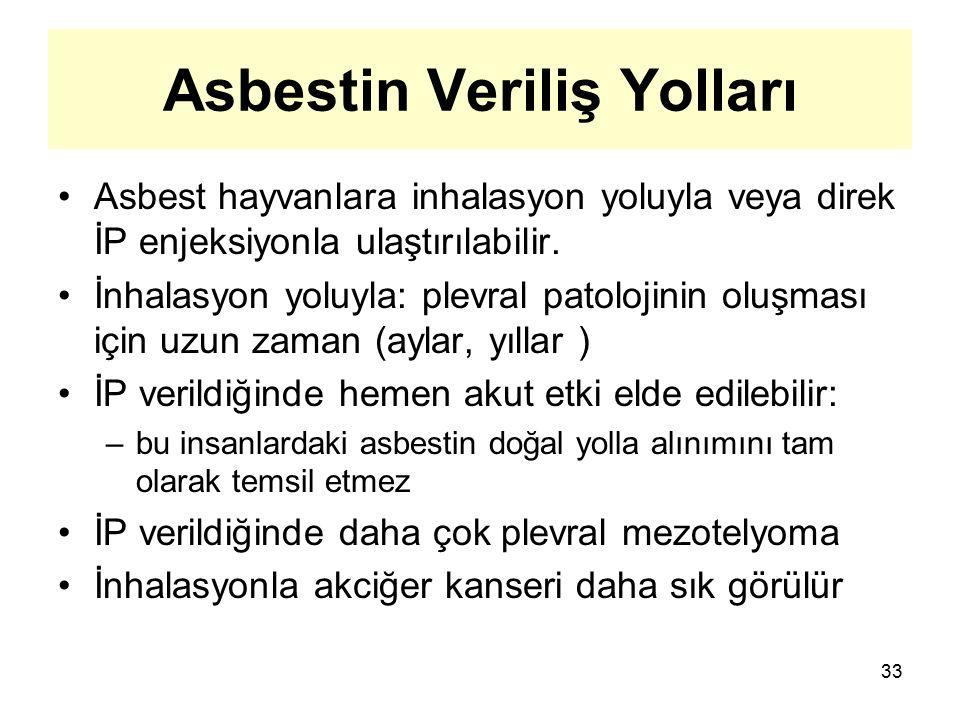 33 Asbestin Veriliş Yolları Asbest hayvanlara inhalasyon yoluyla veya direk İP enjeksiyonla ulaştırılabilir. İnhalasyon yoluyla: plevral patolojinin o