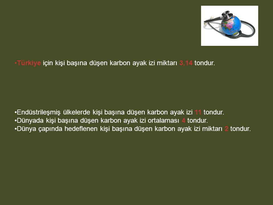 Türkiye için kişi başına düşen karbon ayak izi miktarı 3,14 tondur. Endüstrileşmiş ülkelerde kişi başına düşen karbon ayak izi 11 tondur. Dünyada kişi
