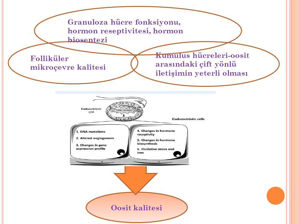 Folliküler mikroçevre kalitesi Kumulus hücreleri-oosit arasındaki çift yönlü iletişimin yeterli olması Oosit kalitesi Granuloza hücre fonksiyonu, hormon reseptivitesi, hormon biosentezi