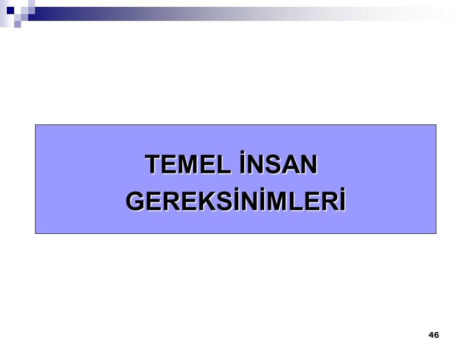46 TEMEL İNSAN GEREKSİNİMLERİ