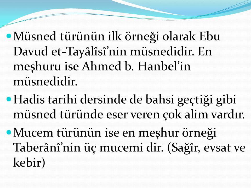 Müsned türünün ilk örneği olarak Ebu Davud et-Tayâlîsî'nin müsnedidir.
