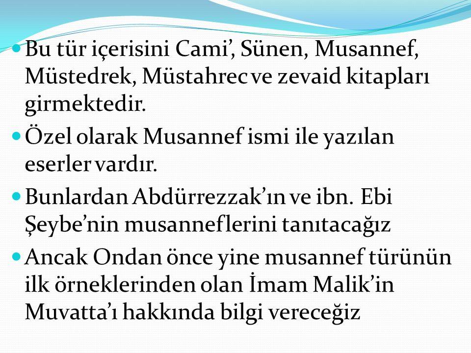 Bu tür içerisini Cami', Sünen, Musannef, Müstedrek, Müstahrec ve zevaid kitapları girmektedir.