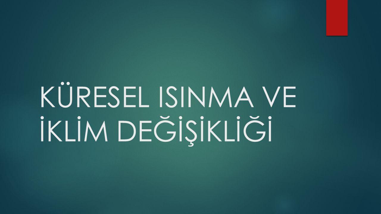 KYOTO PROTOKOLÜ  Türkiye nin, Kyoto Protokolüne katılmasının uygun bulunduğuna ilişkin kanun tasarısı 05.02.2009 tarihinde, TBMM Genel Kurulunda kabul edilerek yasalaştı.