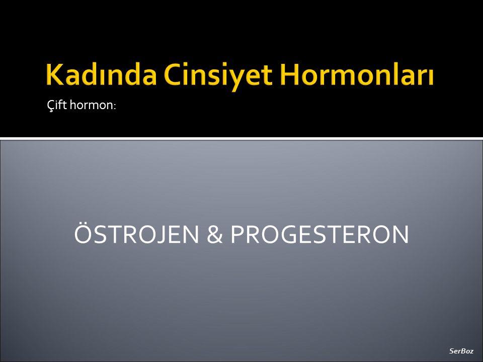 Çift hormon: ÖSTROJEN & PROGESTERON SerBoz