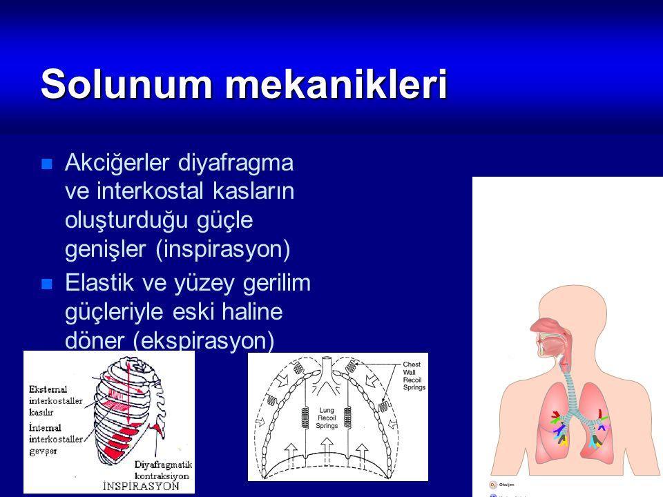 Solunum mekanikleri Akciğerler diyafragma ve interkostal kasların oluşturduğu güçle genişler (inspirasyon) Elastik ve yüzey gerilim güçleriyle eski ha