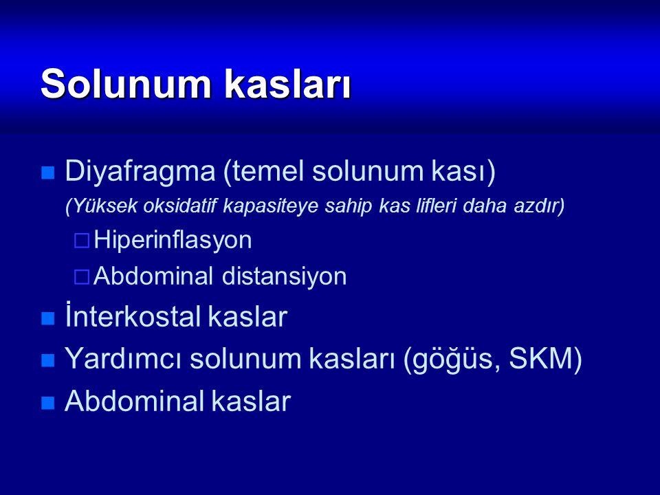 Solunum kasları Diyafragma (temel solunum kası) (Yüksek oksidatif kapasiteye sahip kas lifleri daha azdır)  Hiperinflasyon  Abdominal distansiyon İn