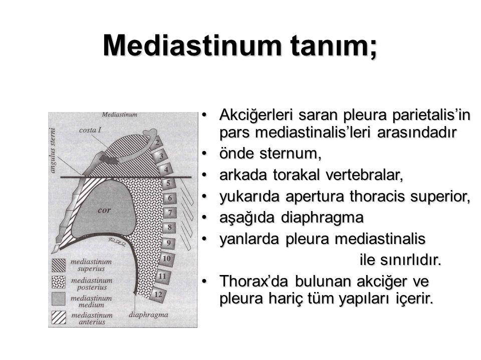 Mediastinum tanım; Akciğerleri saran pleura parietalis'in pars mediastinalis'leri arasındadırAkciğerleri saran pleura parietalis'in pars mediastinalis