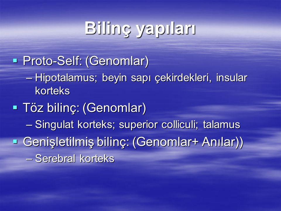 Bilinç yapıları  Proto-Self: (Genomlar) –Hipotalamus; beyin sapı çekirdekleri, insular korteks  Töz bilinç: (Genomlar) –Singulat korteks; superior c