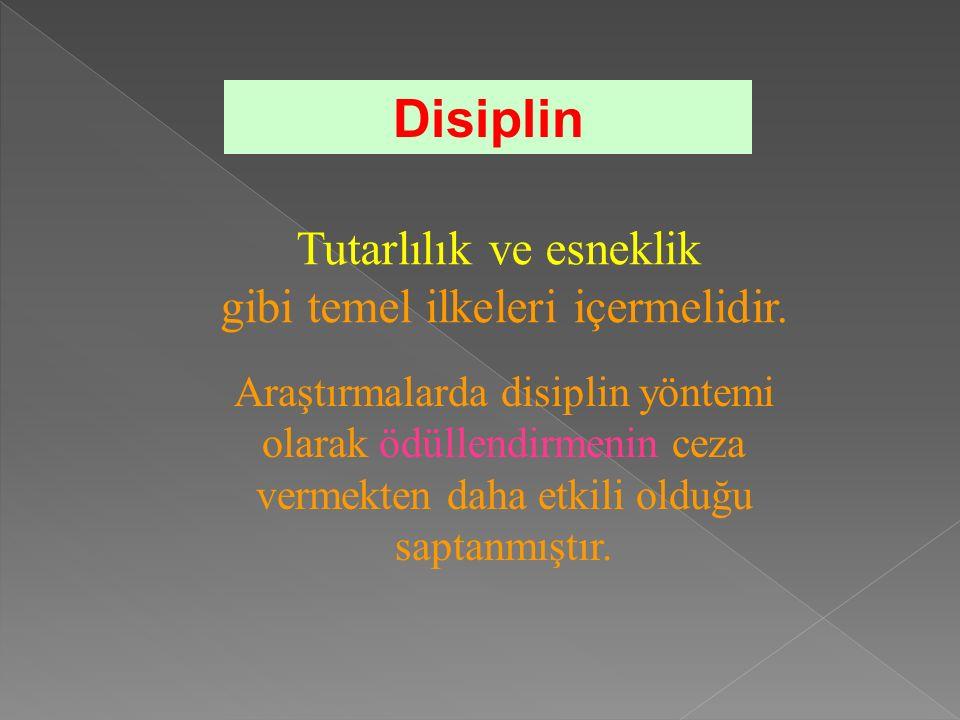 Tutarlılık ve esneklik gibi temel ilkeleri içermelidir.