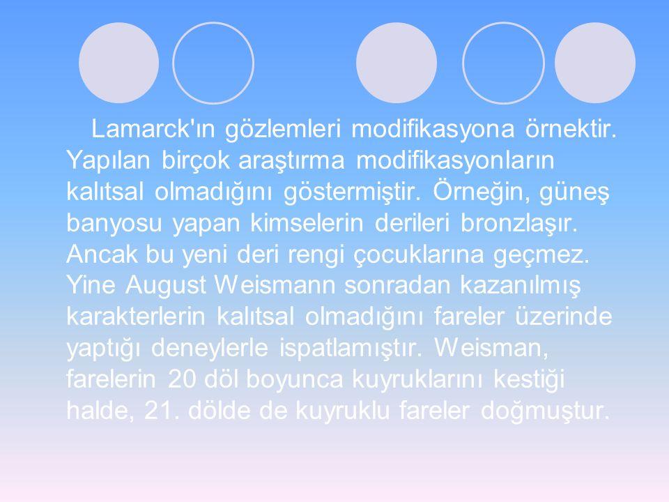 Lamarck'ın gözlemleri modifikasyona örnektir. Yapılan birçok araştırma modifikasyonların kalıtsal olmadığını göstermiştir. Örneğin, güneş banyosu yapa