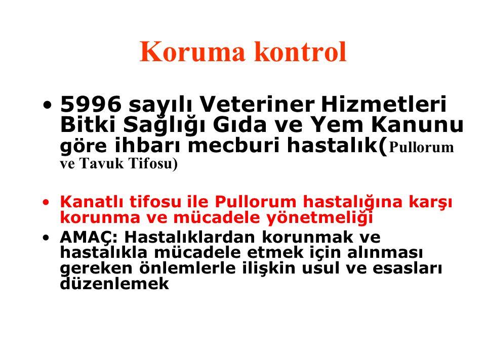 Koruma kontrol 5996 sayılı Veteriner Hizmetleri Bitki Sağlığı Gıda ve Yem Kanunu göre ihbarı mecburi hastalık( Pullorum ve Tavuk Tifosu) Kanatlı tifos