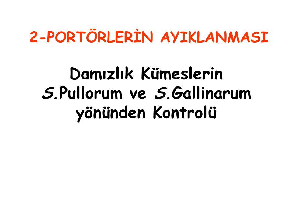Damızlık Kümeslerin S.Pullorum ve S.Gallinarum yönünden Kontrolü 2-PORTÖRLERİN AYIKLANMASI