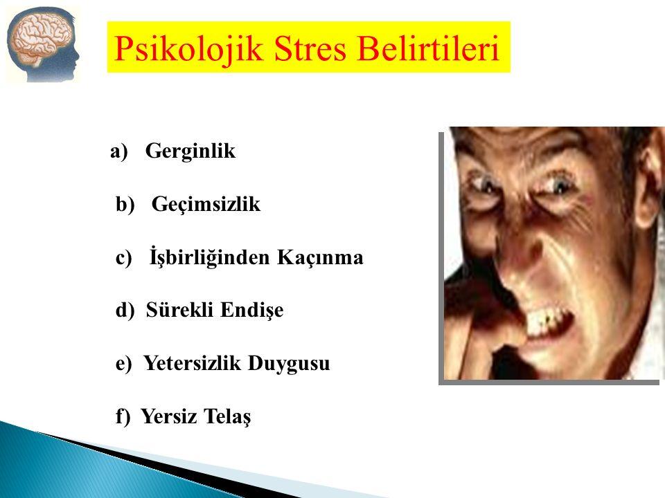 a) Tansiyon Yükselmesi b) Sindirim Bozukluğu c) Terleme d) Nefes Darlığı e) Baş ağrısı f) Yorgunluk g) Alerji h) Mide Bulantısı Fiziksel Stres Belirtileri