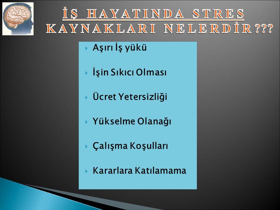 FİZİK ÇEVREDEN KAYNAKLANAN STRES SOSYAL ÇEVREDEN KAYNAKLANAN STRES İŞ HAYATINDAN KAYNAKLANAN STRES KİŞİLİK VE YORUM KAYNAKLI STRES