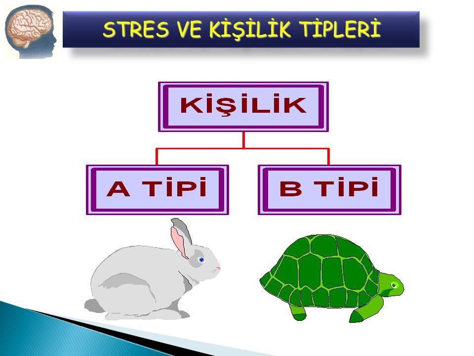 Bireylerin kişilikleri, stresten etkilenme düzeylerini doğrudan etkilemektedir.