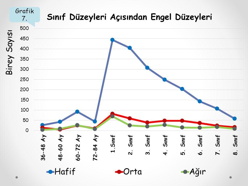 Grafik 7. Sınıf Düzeyleri Açısından Engel Düzeyleri Birey Sayısı