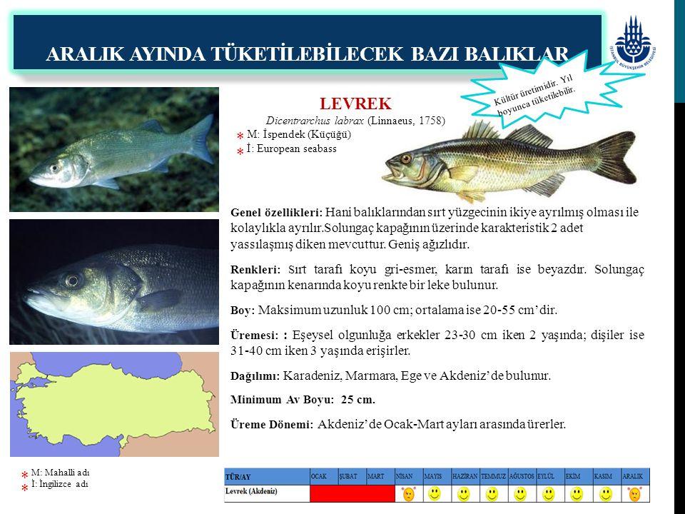 Genel özellikleri: Hani balıklarından sırt yüzgecinin ikiye ayrılmış olması ile kolaylıkla ayrılır.Solungaç kapağının üzerinde karakteristik 2 adet ya