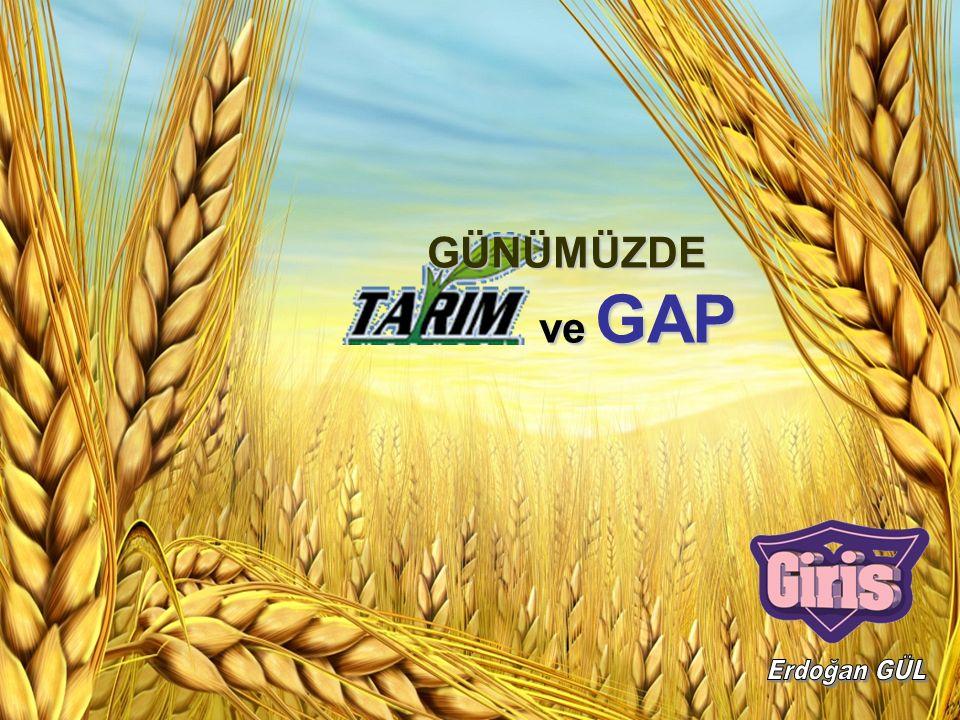 İnsanların toprağı işleyerek ekme ve dikme yoluyla ondan ürün elde etmesi faaliyetine tarım denir.