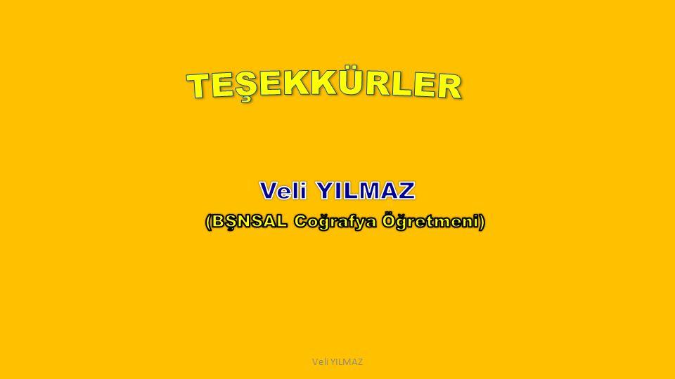Veli YILMAZ