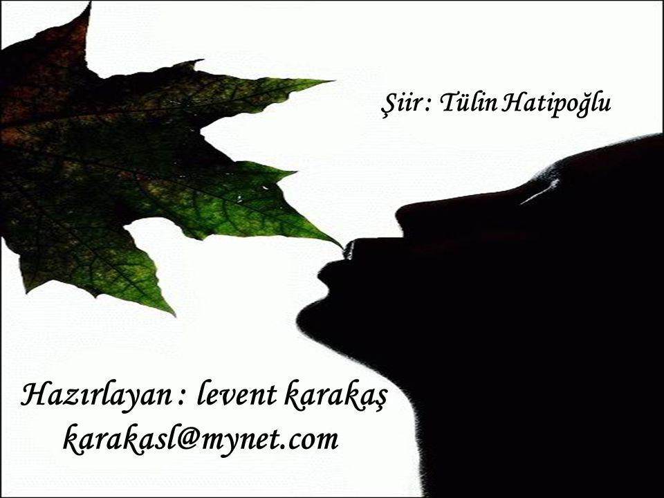 Şiir : Tülin Hatipoğlu Hazırlayan : levent karakaş karakasl@mynet.com