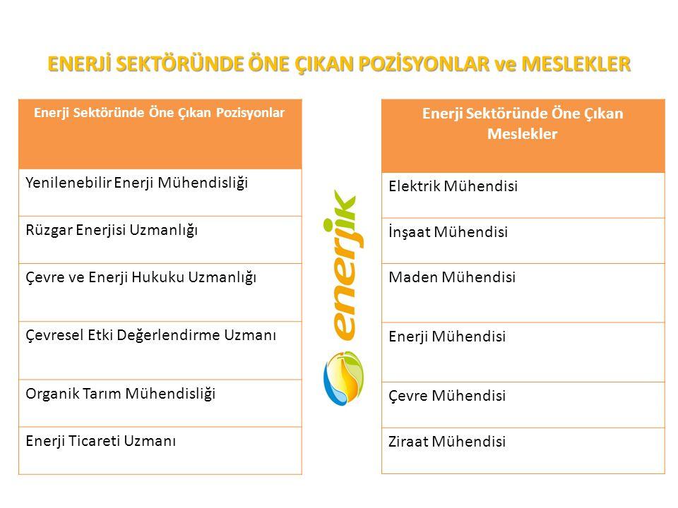 ENERJİ SEKTÖRÜNDE ÖNE ÇIKAN POZİSYONLAR ve MESLEKLER Enerji Sektöründe Öne Çıkan Pozisyonlar Yenilenebilir Enerji Mühendisliği Rüzgar Enerjisi Uzmanlı