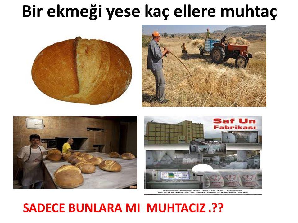 Bir ekmeği yese kaç ellere muhtaç SADECE BUNLARA MI MUHTACIZ.??