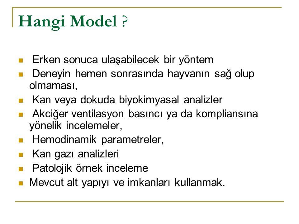 Rat ventilasyon sistemi (İstanbul Üniversitesi İstanbul Tıp fakültesi Anesteziyoloji ve Yoğun Bakım Ünitesi Beceri laboratuarı)