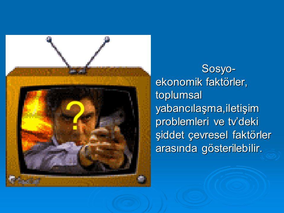 Sosyo- ekonomik faktörler, toplumsal yabancılaşma,iletişim problemleri ve tv'deki şiddet çevresel faktörler arasında gösterilebilir.